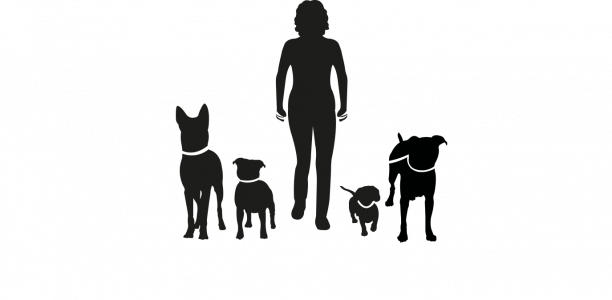 Hond & Baas Coaching